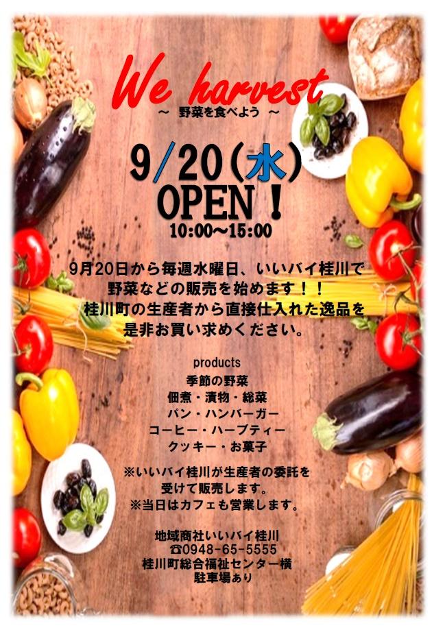 毎週水曜日、いいバイ桂川で野菜の販売を始めます!